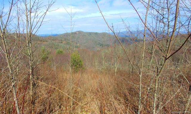 382 Adcock Mountain Road 6B, Waynesville, NC 28785 (#3380888) :: LePage Johnson Realty Group, LLC