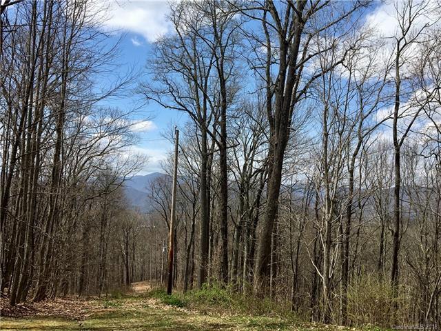 161 Smokey Ridge Loop #15, Waynesville, NC 28786 (#3380918) :: Stephen Cooley Real Estate Group