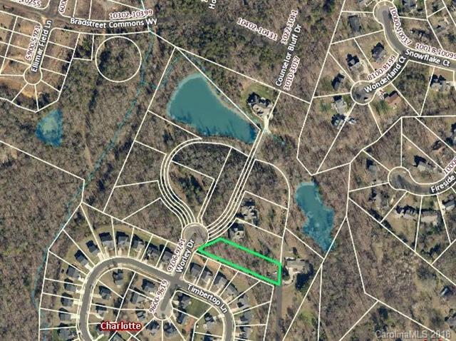 9712 Worley Drive, Charlotte, NC 28215 (#3380933) :: Exit Mountain Realty