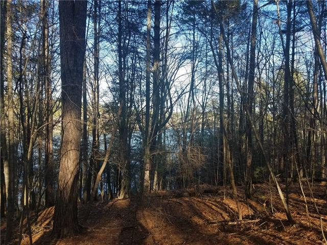 110 Beacon Ridge Drive, Connelly Springs, NC 28612 (#3381076) :: Mossy Oak Properties Land and Luxury