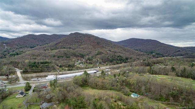45 Small Mountain Drive, Asheville, NC 28805 (#3381077) :: Exit Realty Vistas