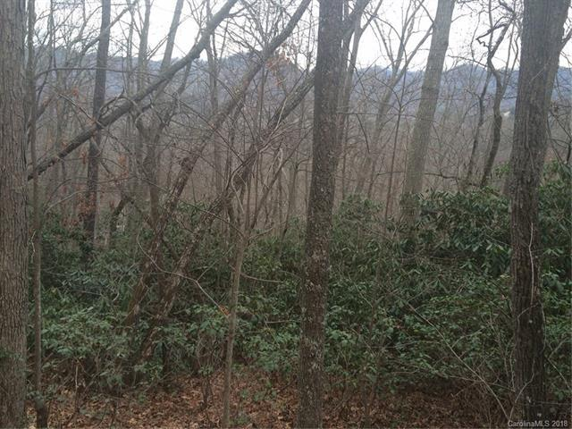 99999 Pearson Lane #3, Black Mountain, NC 28711 (#3381111) :: Rinehart Realty