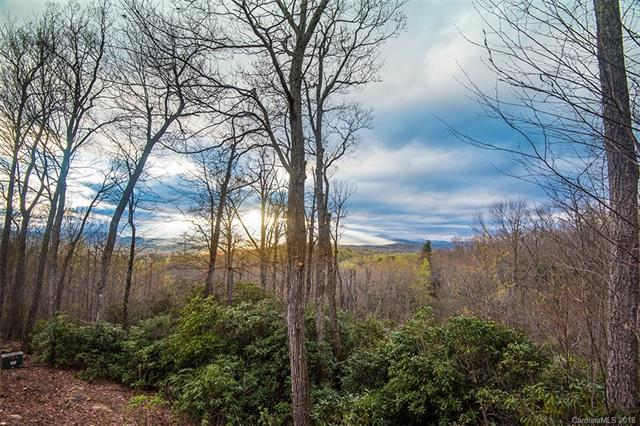 185 Crossvine Trail, Hendersonville, NC 28739 (#3381514) :: Exit Mountain Realty