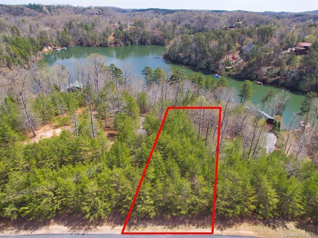 8 Indian Summer Lane, Mill Spring, NC 28756 (#3381719) :: Robert Greene Real Estate, Inc.