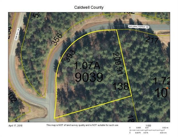 000 National Forest Drive #138, Collettsville, NC 28611 (#3381723) :: Rinehart Realty