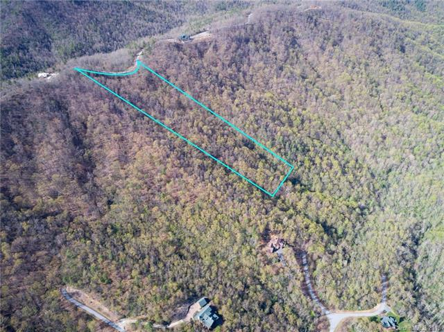 198 Catawba Falls Preserve Parkway #198, Black Mountain, NC 28711 (#3381749) :: Zanthia Hastings Team