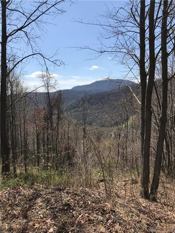 Lot T-72 Kestrel Lane T72, Black Mountain, NC 28711 (#3381879) :: LePage Johnson Realty Group, LLC