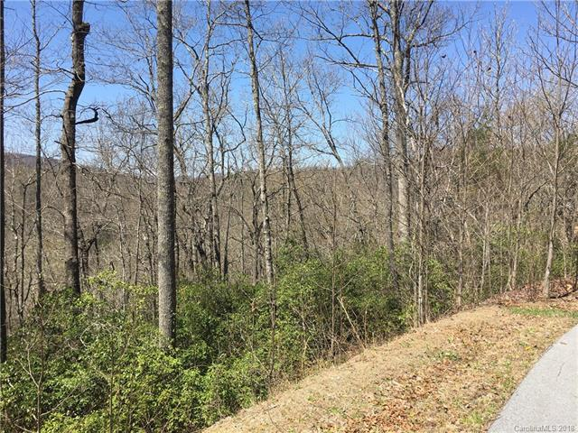88 Havens Creek Road #2, Black Mountain, NC 28711 (#3381906) :: Exit Mountain Realty