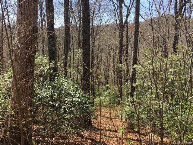 123 Havens Creek Road #8, Black Mountain, NC 28711 (#3381914) :: Exit Mountain Realty
