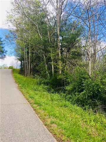 4843 Crystal Creek Road #48, Morganton, NC 28655 (#3381920) :: Mossy Oak Properties Land and Luxury