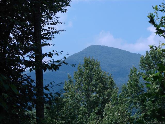 521 Spring Lake Road, Maggie Valley, NC 28751 (#3381926) :: Puffer Properties