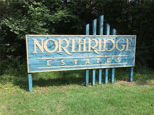 500 Birchwood Drive, Morganton, NC 28655 (#3382186) :: Zanthia Hastings Team
