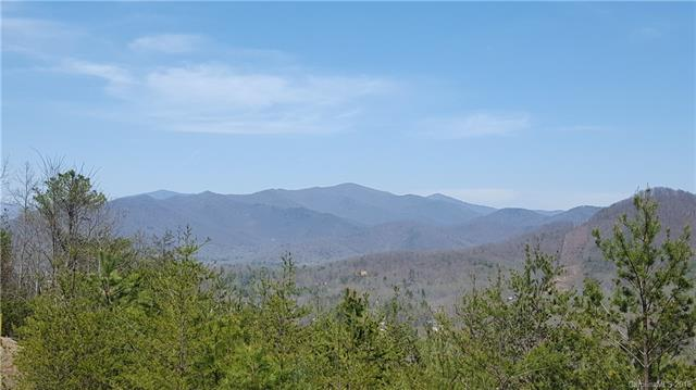 11 Old Greybeard Loop 3A1, Black Mountain, NC 28711 (#3382223) :: Besecker Homes Team