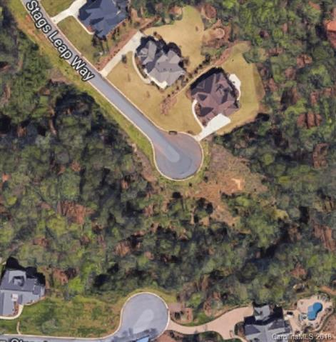 3438 Stags Leap Way #82, York, SC 29745 (#3382281) :: Burton Real Estate Group