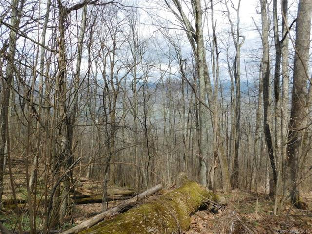 00 Utah Mountain Road, Waynesville, NC 28786 (#3382680) :: Puffer Properties