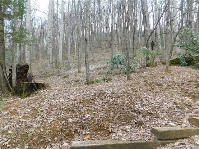 44 Apple Tree Court #44, Waynesville, NC 28786 (#3382747) :: Cloninger Properties