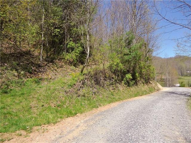 Lot 1 off Higher Ground Ridge, Waynesville, NC 28785 (#3382792) :: Puffer Properties