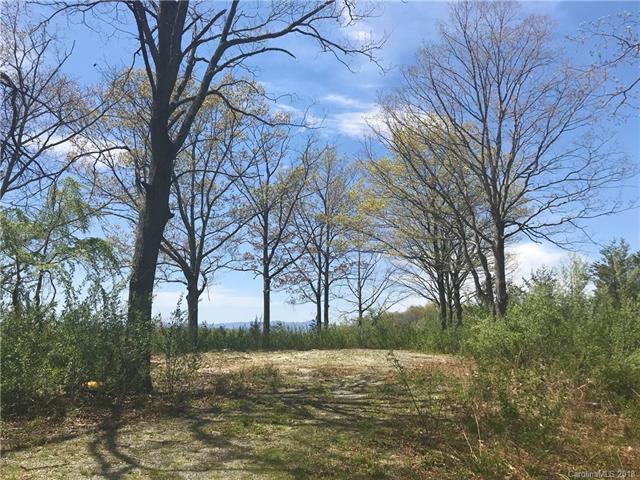 00 Chapman Drive, Hendersonville, NC 28792 (#3383009) :: Exit Realty Vistas