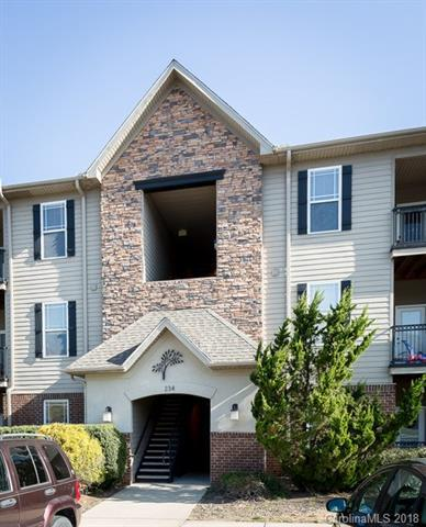 234 Brickton Village Circle #207, Fletcher, NC 28732 (#3383128) :: Puffer Properties