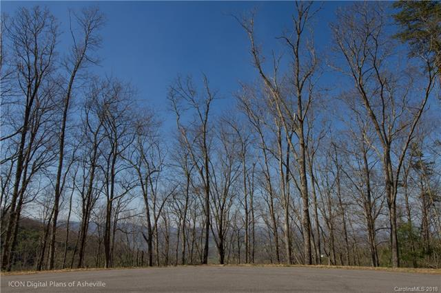 30 Pitch Pine Drive, Leicester, NC 28748 (#3383188) :: MartinGroup Properties