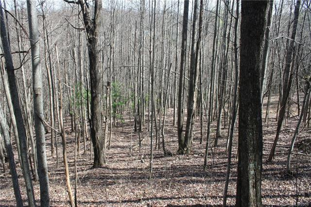 Lot 7 Feather Falls Trail, Black Mountain, NC 28711 (#3383780) :: Odell Realty Group