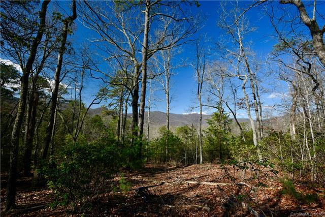 1604 Country View Way Lot 162, Arden, NC 28704 (#3383826) :: RE/MAX RESULTS