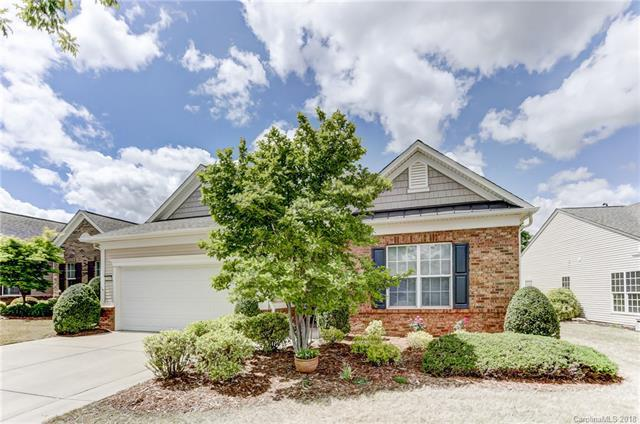 23207 Kingfisher Drive, Indian Land, SC 29707 (#3384019) :: LePage Johnson Realty Group, LLC