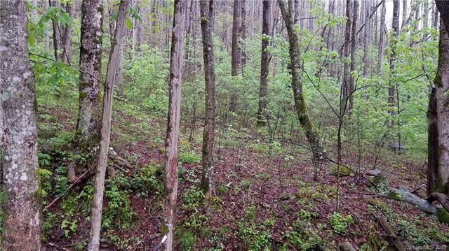 16 Roaring Creek Lane #16, Waynesville, NC 28785 (#3384176) :: LePage Johnson Realty Group, LLC