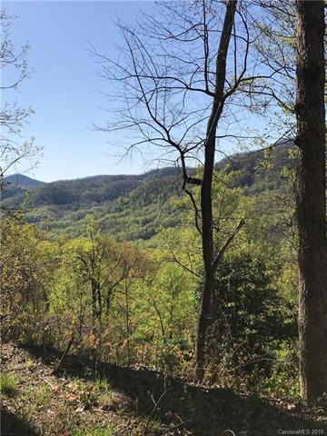 Lot CC-30 Kestrel Lane Cc-30, Black Mountain, NC 28711 (#3384319) :: Puffer Properties