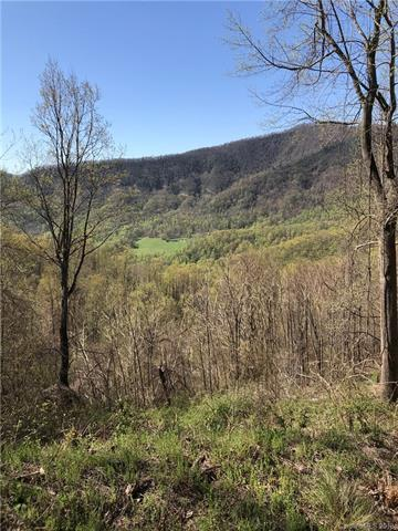 Lot H11 Warbler Lane H11, Black Mountain, NC 28711 (#3384354) :: Puffer Properties