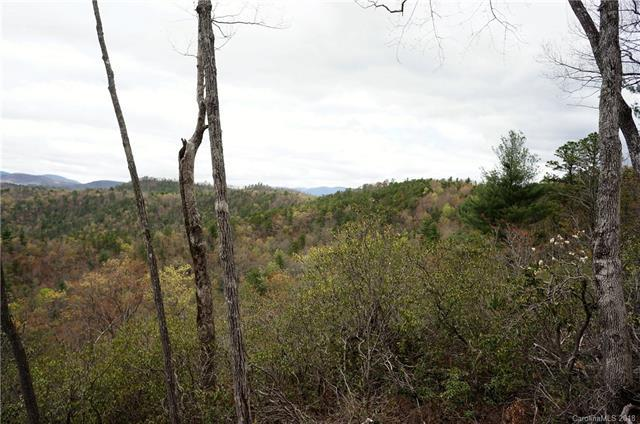 TBD Ruffed Grouse Road #46, Brevard, NC 28712 (#3384552) :: Puffer Properties