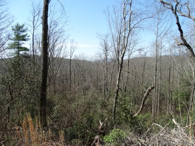 000 Orchard View #8, Spruce Pine, NC 28777 (#3384620) :: Caulder Realty and Land Co.