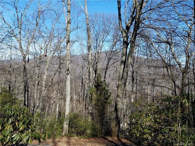 170 Mcguffey Ridge Road, Gerton, NC 28735 (#3384926) :: Puffer Properties