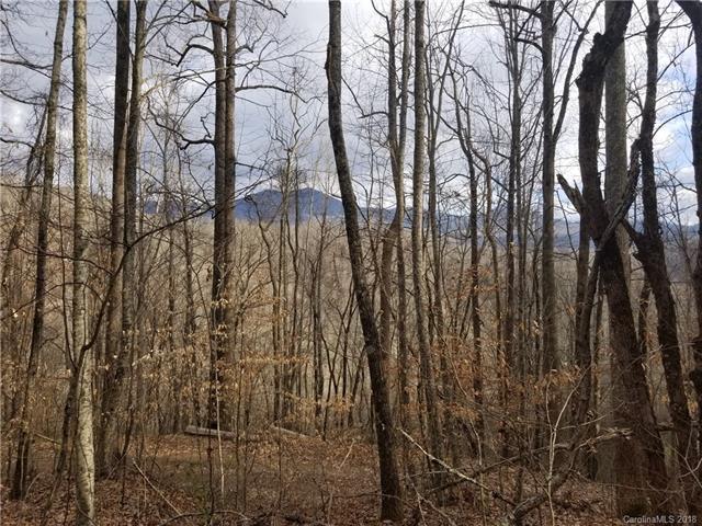 0 North Fork Road #31, Sylva, NC 28779 (#3384957) :: Robert Greene Real Estate, Inc.