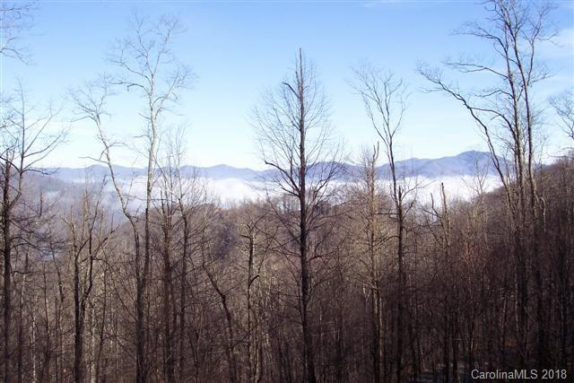 Lot 206 Lasso Lane, Waynesville, NC 28785 (#3384989) :: High Performance Real Estate Advisors