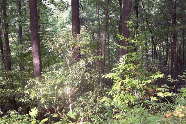 Lot 105 Fragrant Pine Drive, Waynesville, NC 28785 (#3385066) :: Charlotte Home Experts
