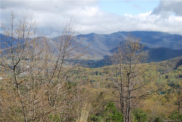 25 Sisters View Drive #145, Black Mountain, NC 28711 (#3385568) :: Zanthia Hastings Team