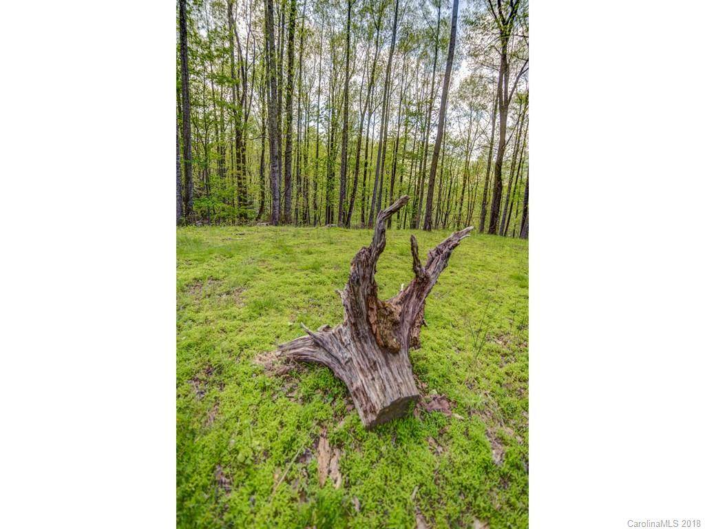 Lot 7 Powder Springs Trail, Arden, NC 28704 (#3385688) :: Puffer Properties