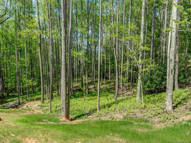 Lot 3 Powder Springs Trail, Arden, NC 28704 (#3385707) :: Puffer Properties