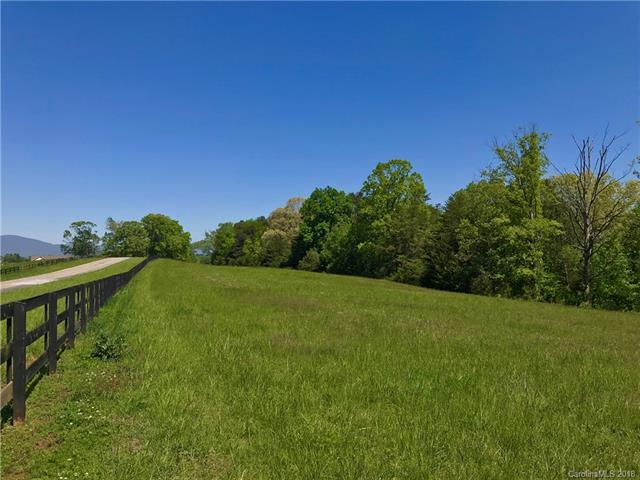 TBD A R Thompson Road Lot 10, Mill Spring, NC 28756 (#3385905) :: Keller Williams Professionals