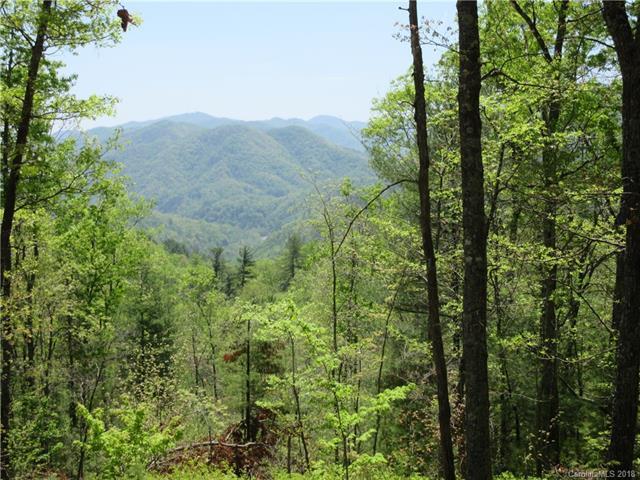 9-B Gentle Ridge Drive, Marshall, NC 28753 (#3386247) :: MartinGroup Properties