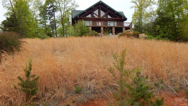 352 Arbra Mountain Way, Bostic, NC 28018 (#3386419) :: Rinehart Realty