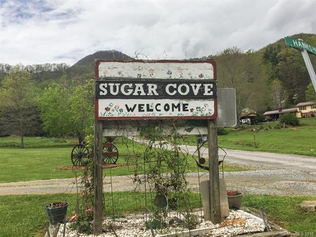 26 Duncan Road 5-B, Waynesville, NC 28785 (#3387564) :: LePage Johnson Realty Group, LLC
