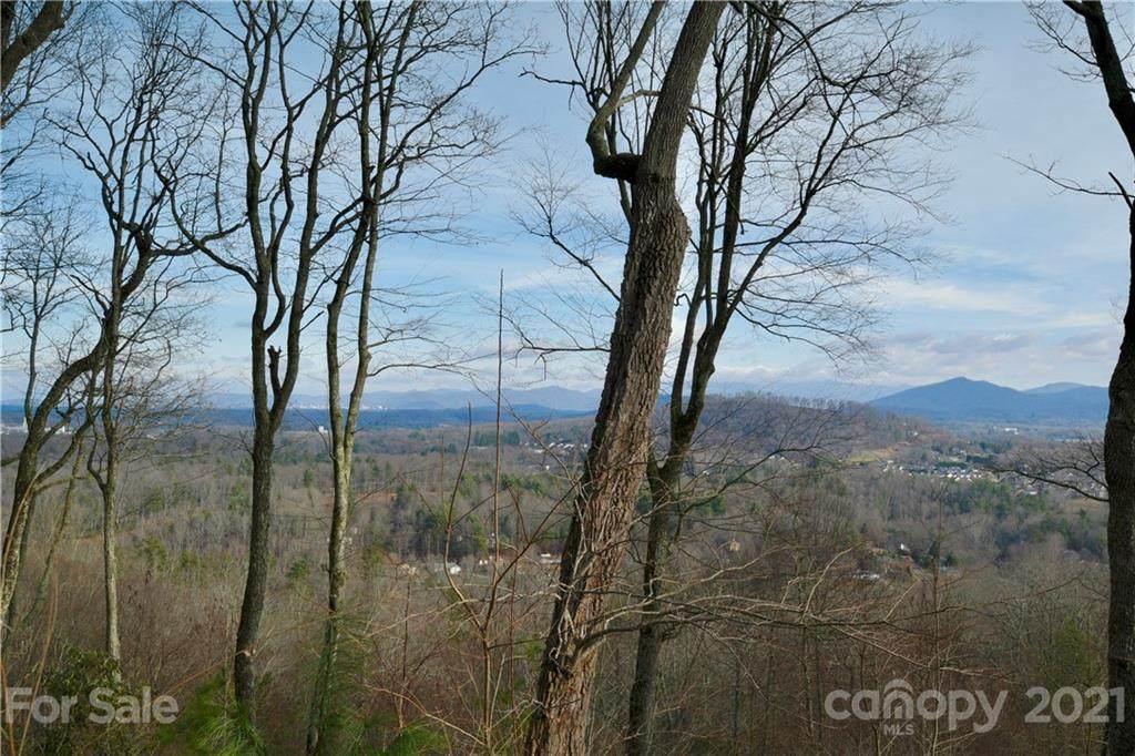 35 Ridge Pine Trail Lot 88, Arden, NC 28704 (#3388169) :: Team Southline