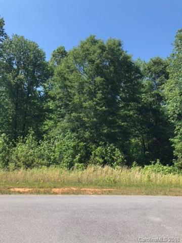 352 Ethan Lane, Rock Hill, SC 29732 (#3388195) :: LePage Johnson Realty Group, LLC