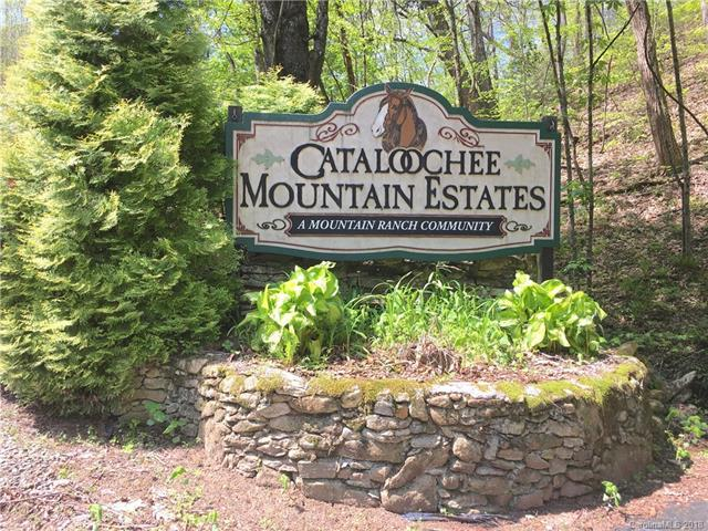 0000 Curry Comb Trail #510, Waynesville, NC 28785 (#3388380) :: Puffer Properties