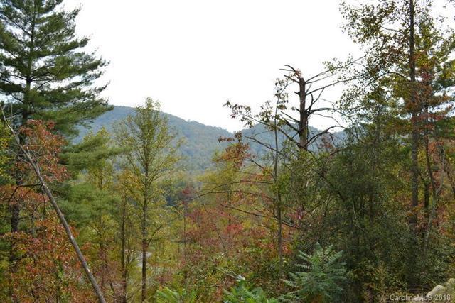 999999 Autumn Trail Lane #3, Asheville, NC 28803 (#3388439) :: Exit Mountain Realty