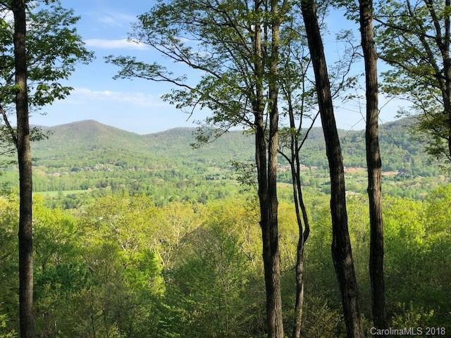 303 Secluded Hills Lane Lot 63, Arden, NC 28704 (#3388562) :: Miller Realty Group