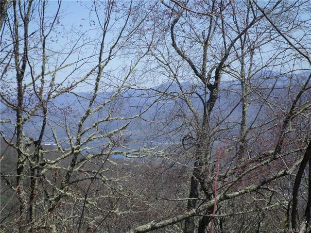0 Briarwood Road C-9, Maggie Valley, NC 28751 (#3388651) :: Puffer Properties