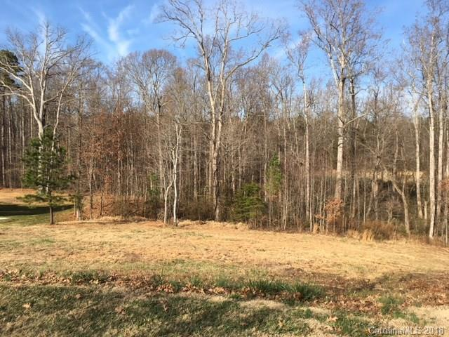 125 E Vista View Place #16, Mooresville, NC 28117 (#3388759) :: LePage Johnson Realty Group, LLC